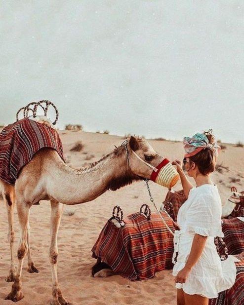Balade Dromadaire activité-evjf-à-Marrakech