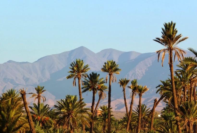 meilleurs lieux pour un EVJF à Marrakech